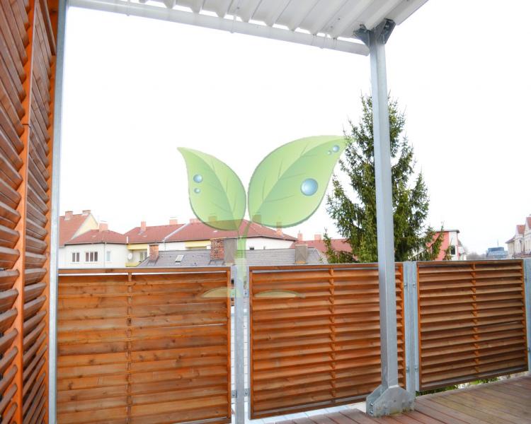 Mietwohnung-mit-Terrasse-12